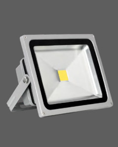 Silver outdoor landscape light